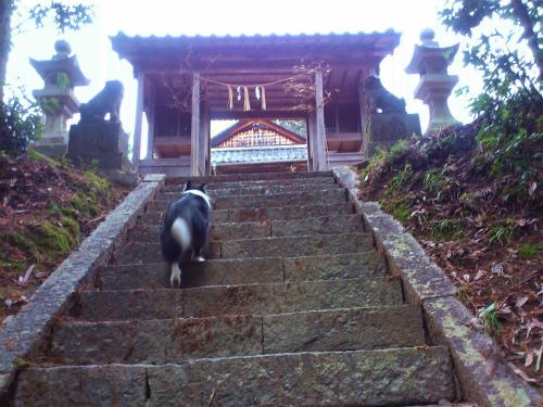 天地神社1