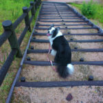 階段振り向き