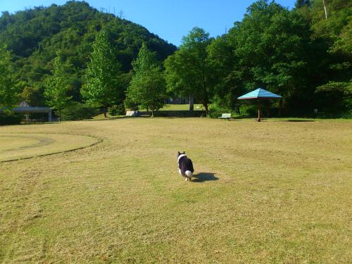 瀬戸運動公園2
