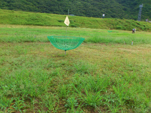変わったゴルフ