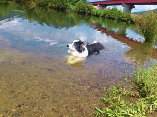 熊山河川敷水