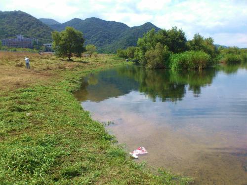 熊山河川敷草刈