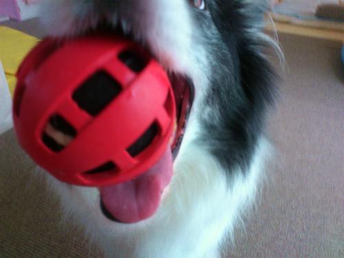 赤いボール2