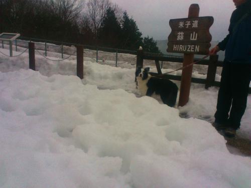 大山スキー3